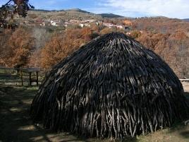 Carbonera01
